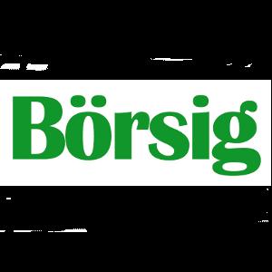 Börsig GmbH Logo